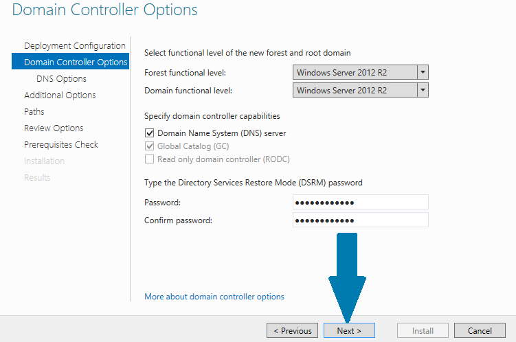provide Directory Services Restore Mode (DSRM) password