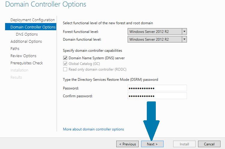 provide Directory Services Restore Mode (DSRM) password