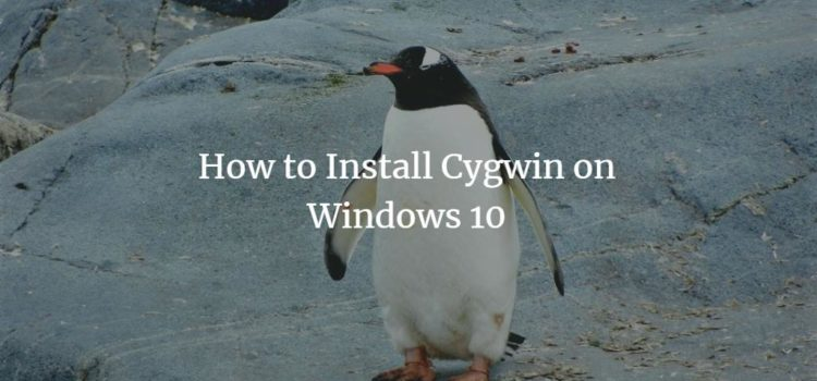 How to Install Cygwin on Windows 10