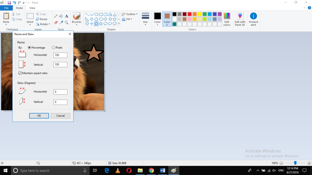 Resize option in paint