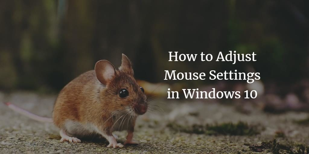 Windows Mouse Settings