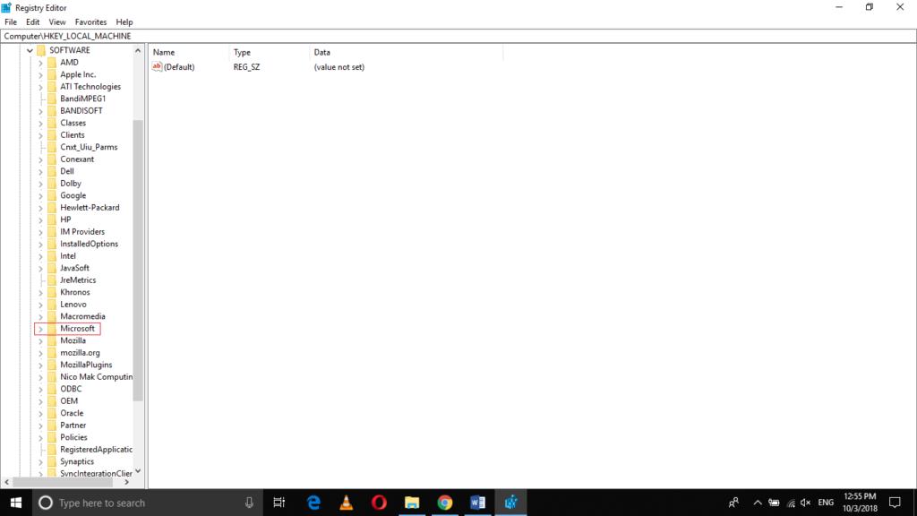 HKEY_LOCAL_MACHINE > Software > Microsoft