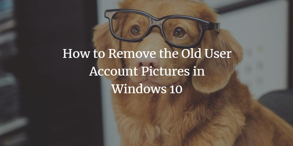 Remove User Account Picture