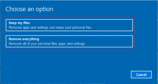 Choose Windows Reset Option