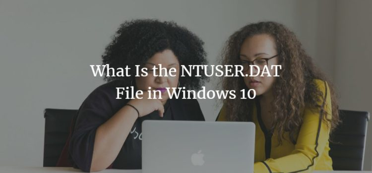 The Windows NTUSER.DAT File