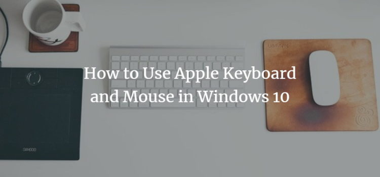 Windows apple mouse keyboard