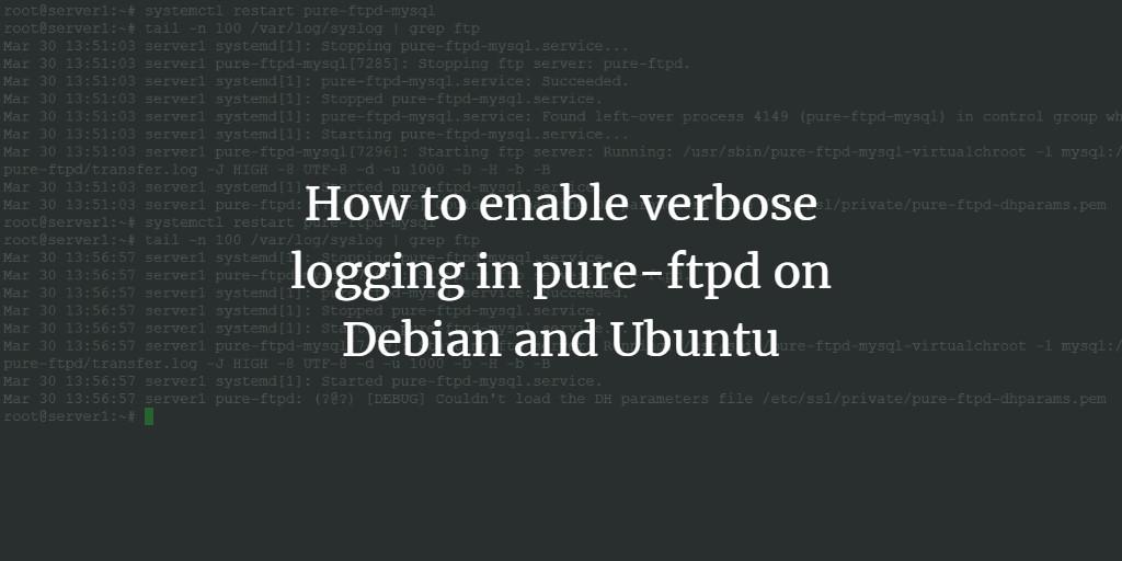 PureFTPD Verbose Log