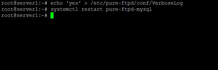 Enable verbose log pure-ftpd