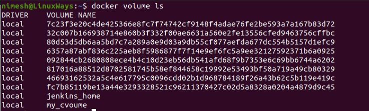 List Docker volumes